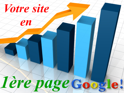 exemples referencement site